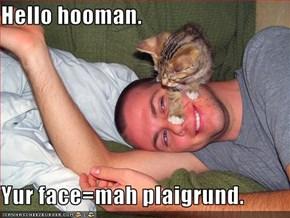 Hello hooman.   Yur face=mah plaigrund.