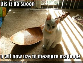 Dis iz da spoon   u wil now uze to measure ma foodz