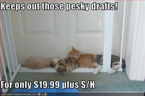 Keeps out those pesky drafts!  For only $19.99 plus S/H