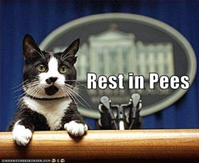 Rest in Pees