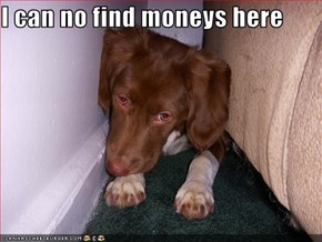 I can no find moneys here