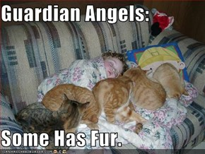 Guardian Angels:  Some Has Fur.