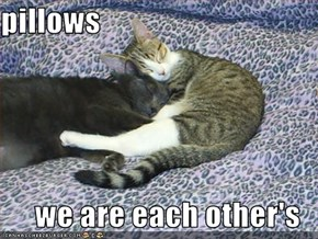pillows  we are each other's