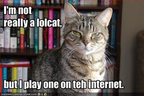I'm not really a lolcat, but I play one on teh internet.
