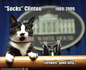 """Socks"" Clinton"