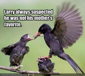 Larry always suspected he was not his mother's favorite.