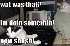 wat was that? im doin somethin! now shush!