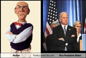 Walter Totally Looks Like Vice President Biden