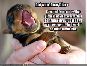 Dai wun: Dear Diary,