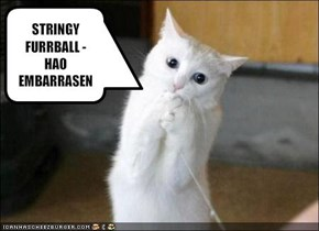 STRINGY FURRBALL - HAO EMBARRASEN