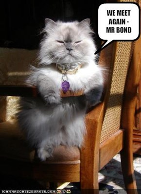 WE MEET AGAIN - MR BOND