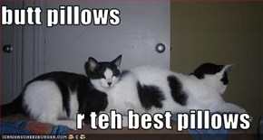 butt pillows  r teh best pillows