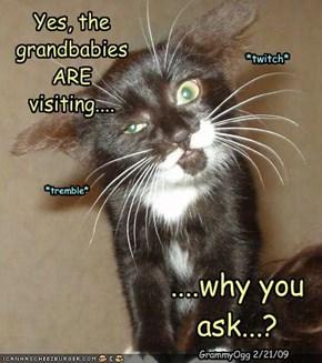 Yes, the grandbabies ARE visiting....