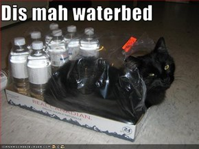 Dis mah waterbed