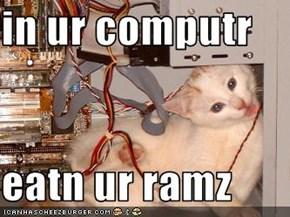 in ur computr  eatn ur ramz