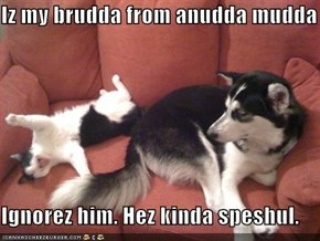 Iz my brudda from anudda mudda  Ignorez him. Hez kinda speshul.