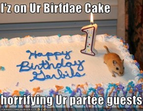 I'z on Ur Birfdae Cake  horrifying Ur partee guests.