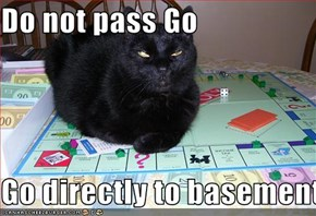 Do not pass Go  Go directly to basement cat