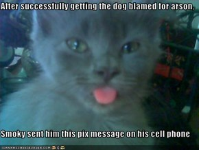 After successfully getting the dog blamed for arson,  Smoky sent him this pix message on his cell phone