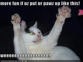 more fun if uz put ur pawz up like this!  weeeeeeeeeeeeeeeee!