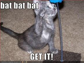 bat bat bat                    GET IT!