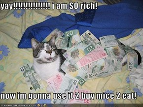 yay!!!!!!!!!!!!!!! i am SO rich!  now im gonna use it 2 buy mice 2 eat!