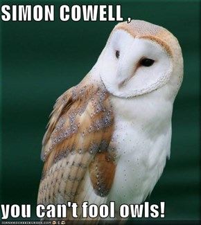 SIMON COWELL ,  you can't fool owls!