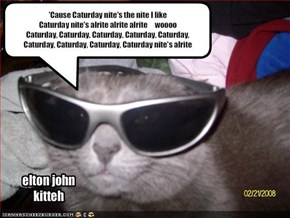 elton john kitteh