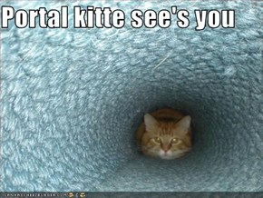 Portal kitte see's you