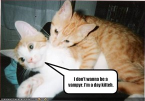 I don't wanna be a vampyr. I'm a day kitteh.