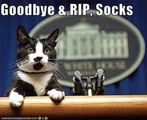 Goodbye & RIP, Socks