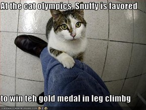 At the cat olympics, Snuffy is favored  to win teh gold medal in leg climbg