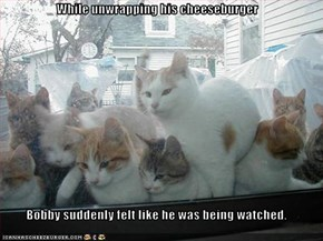 While unwrapping his cheeseburger  Bobby suddenly felt like he was being watched.