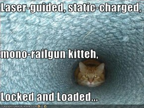 Laser-guided, static-charged, mono-railgun kitteh, Locked and Loaded...