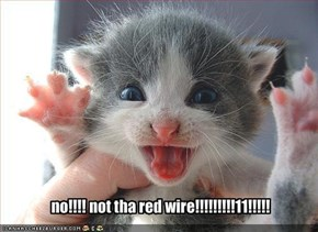 no!!!! not tha red wire!!!!!!!!!11!!!!!