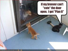"If my bruvver can't ""cute"" the door open,  I got ""Plan B"""