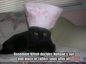 Basement Kitteh decides Holland iz not gud place to collect soulz after all