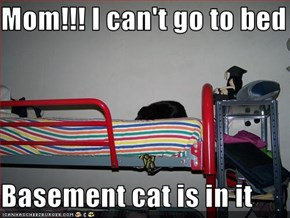 Mom!!! I can't go to bed  Basement cat is in it