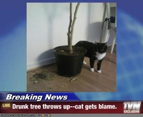 Breaking News - Drunk tree throws up--cat gets blame.
