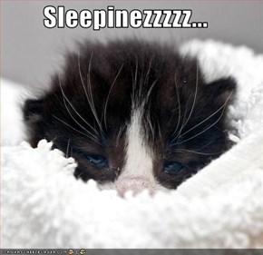 Sleepinezzzzz...