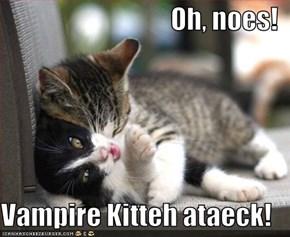Oh, noes!  Vampire Kitteh ataeck!