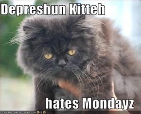 Depreshun Kitteh  hates Mondayz