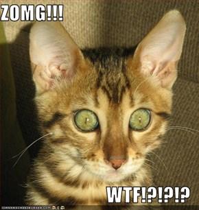 ZOMG!!!  WTF!?!?!?