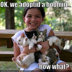 OK, we adoptid a hoomin...  ...now what?