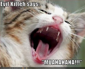 "Evil Kitteh says:  ""MUAHAHAHA!!!"""