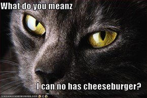What do you meanz  I can no has cheeseburger?