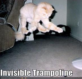 Invisible Trampoline