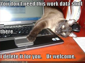 You don't need this work data stuff there... I delete it for you.    Ur welcome.
