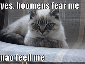 yes, hoomens fear me  nao feed me