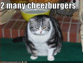 2 many cheezburgers.